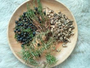 herbs-82497_640
