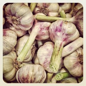garlic-113143_640